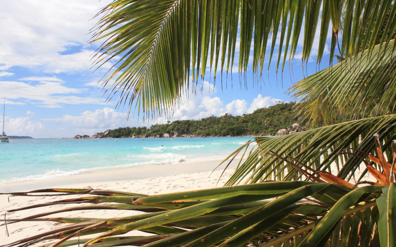 Die Fototapete in Realität - Anse Lazio (Praslin | Seychellen)