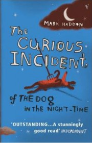 The_Curious_Incident