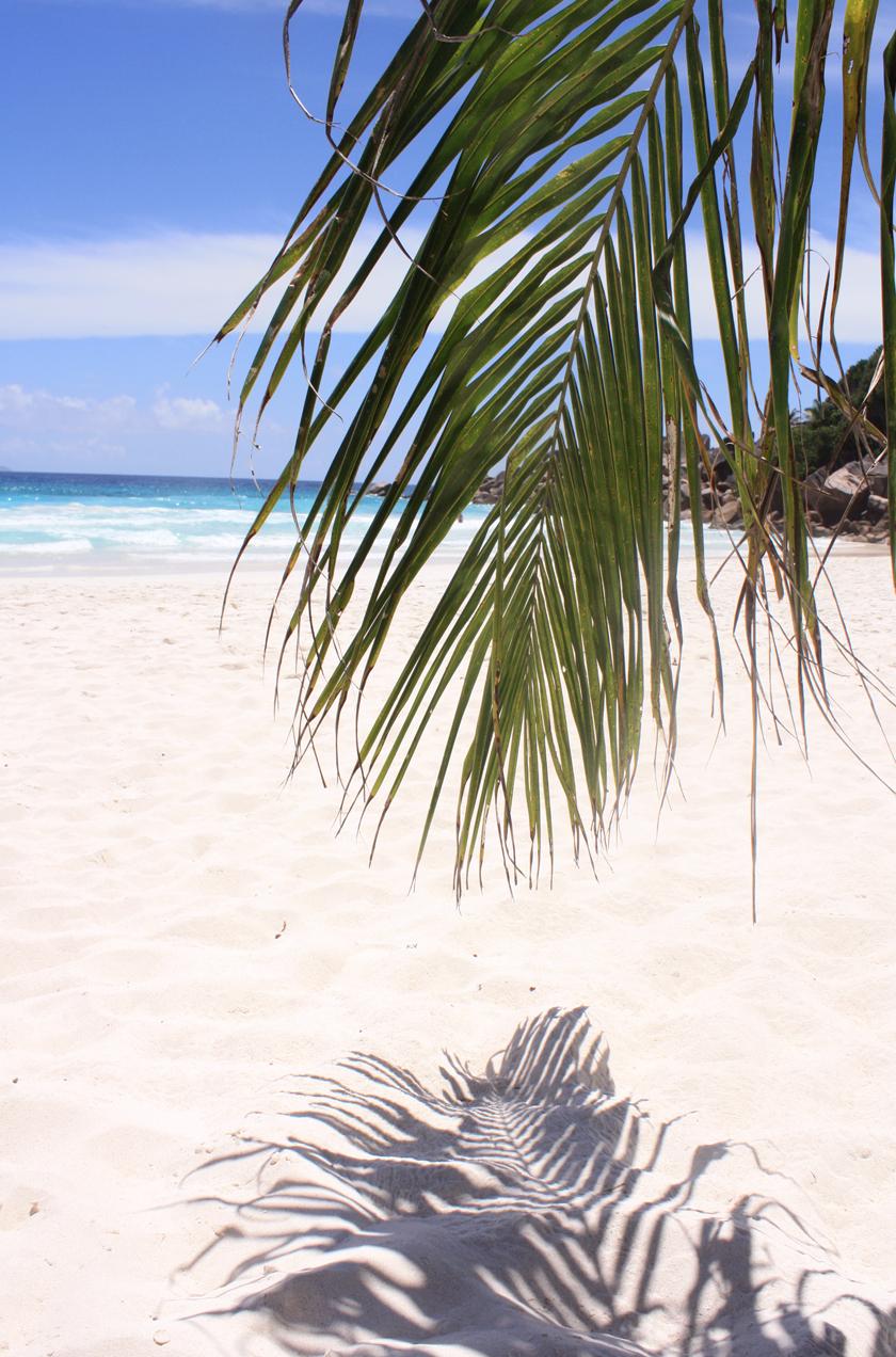 Seychellen La Digue: Petite Anse Seychelles