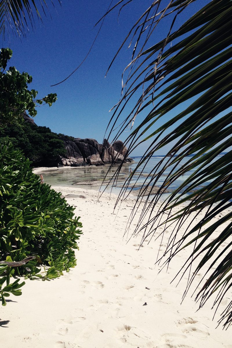 Seychellen_112014_Seychelles_La_Digue_3