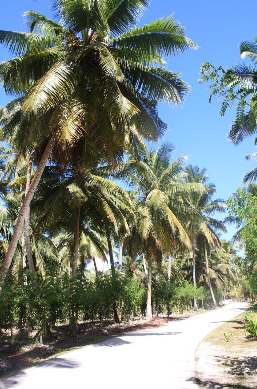 La Digue Seychelles, Seychellen