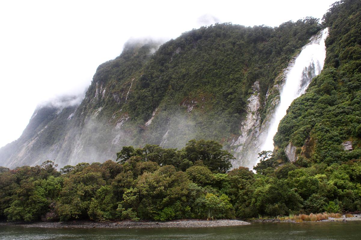 Milford Sound, Südinsel, Neuseeland, Trip, Reisetipps, Natur