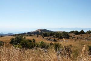 Neuseeland Südinsel Dürre