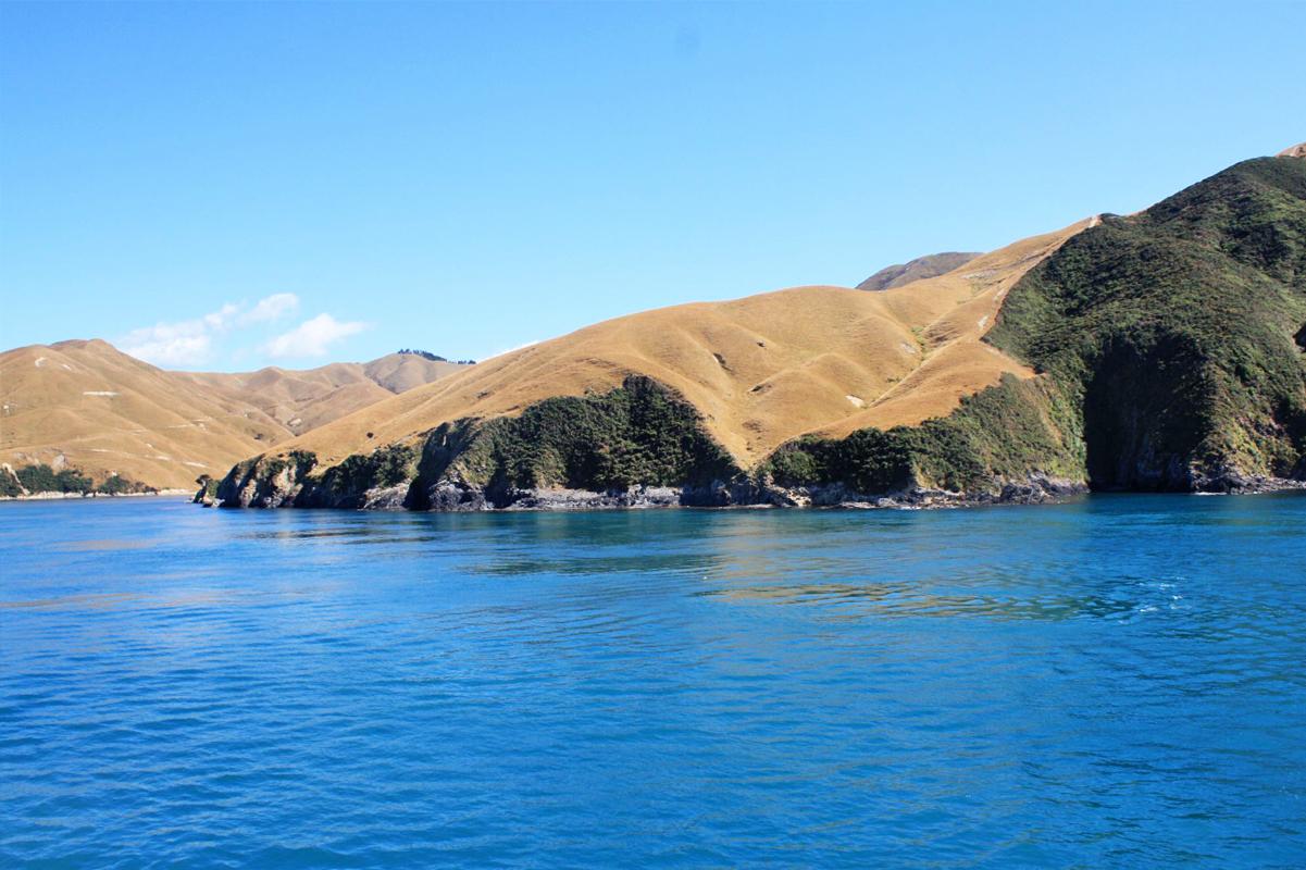 Neuseeland_Suedinsel_4