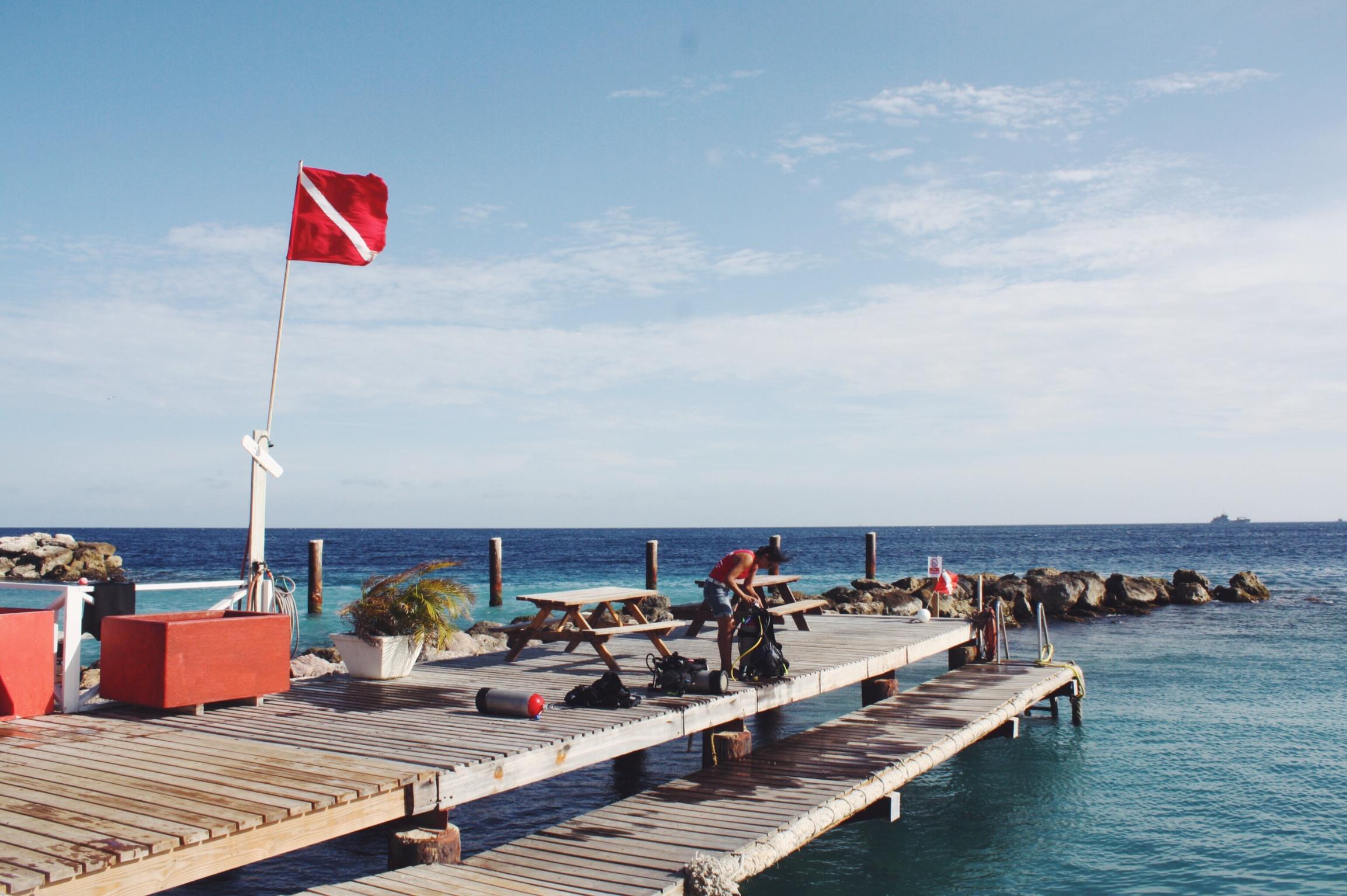 Tauchen Curacao Go West Diving, Alice im Wunderland Riff