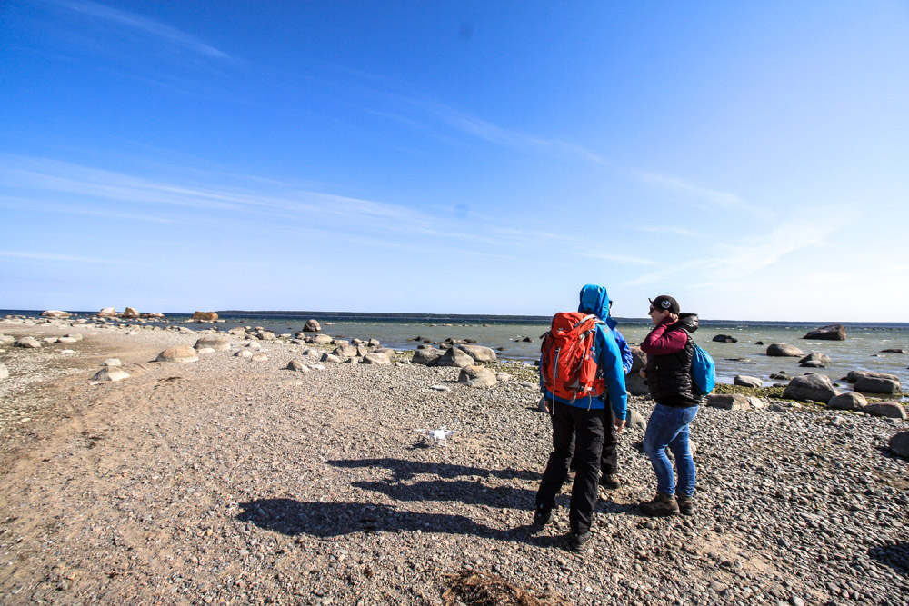 Estland Reisebericht: Wandern im Lahemaa Nationalpark Estland