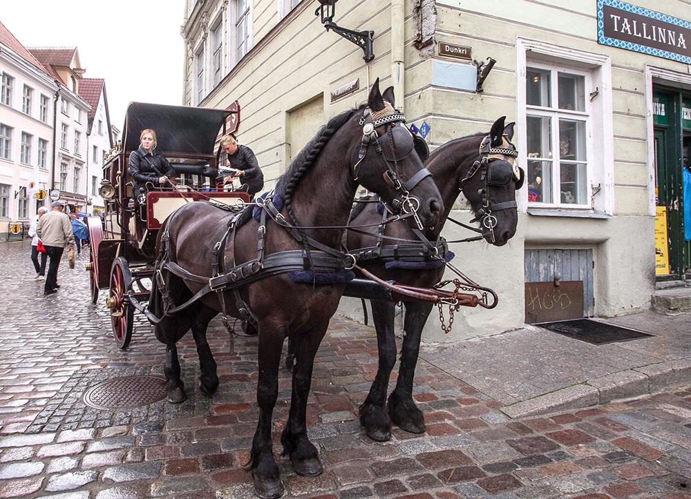 Oldtown Tallinn