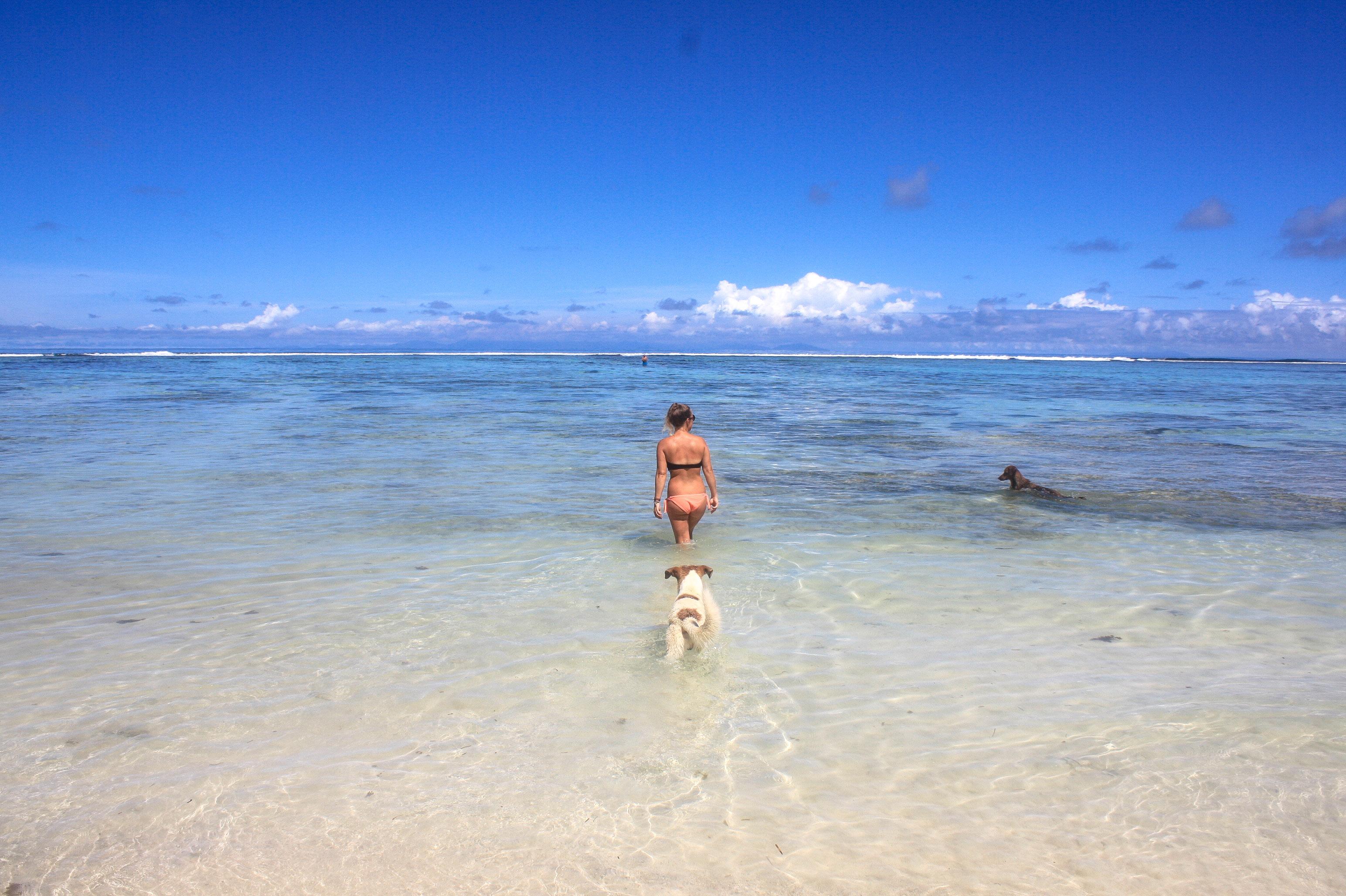 Traumziel seychellen
