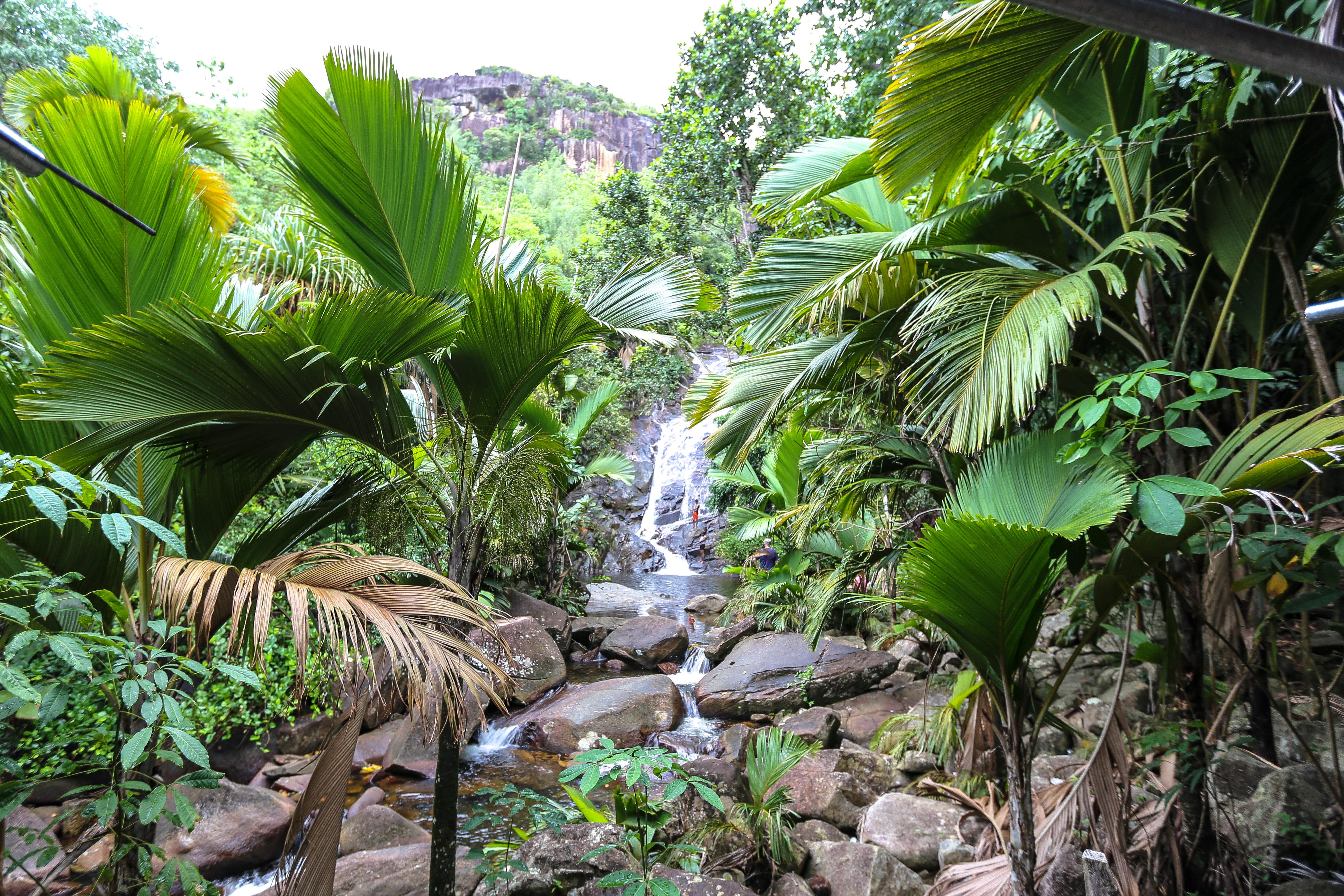 Sauzier waterfall, Port Glaud, Mahé, Seychelles