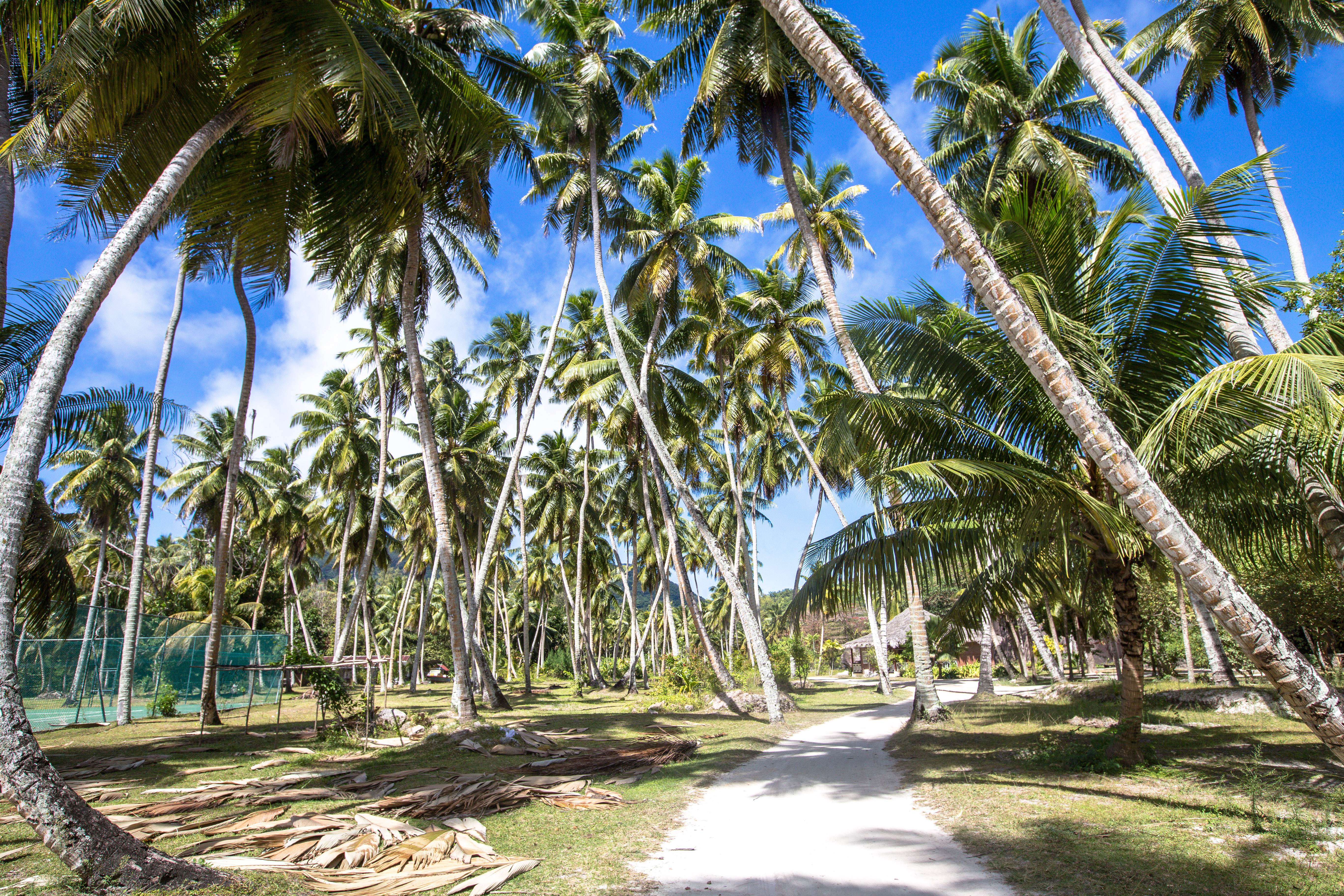 Seychellen L'Union Estate