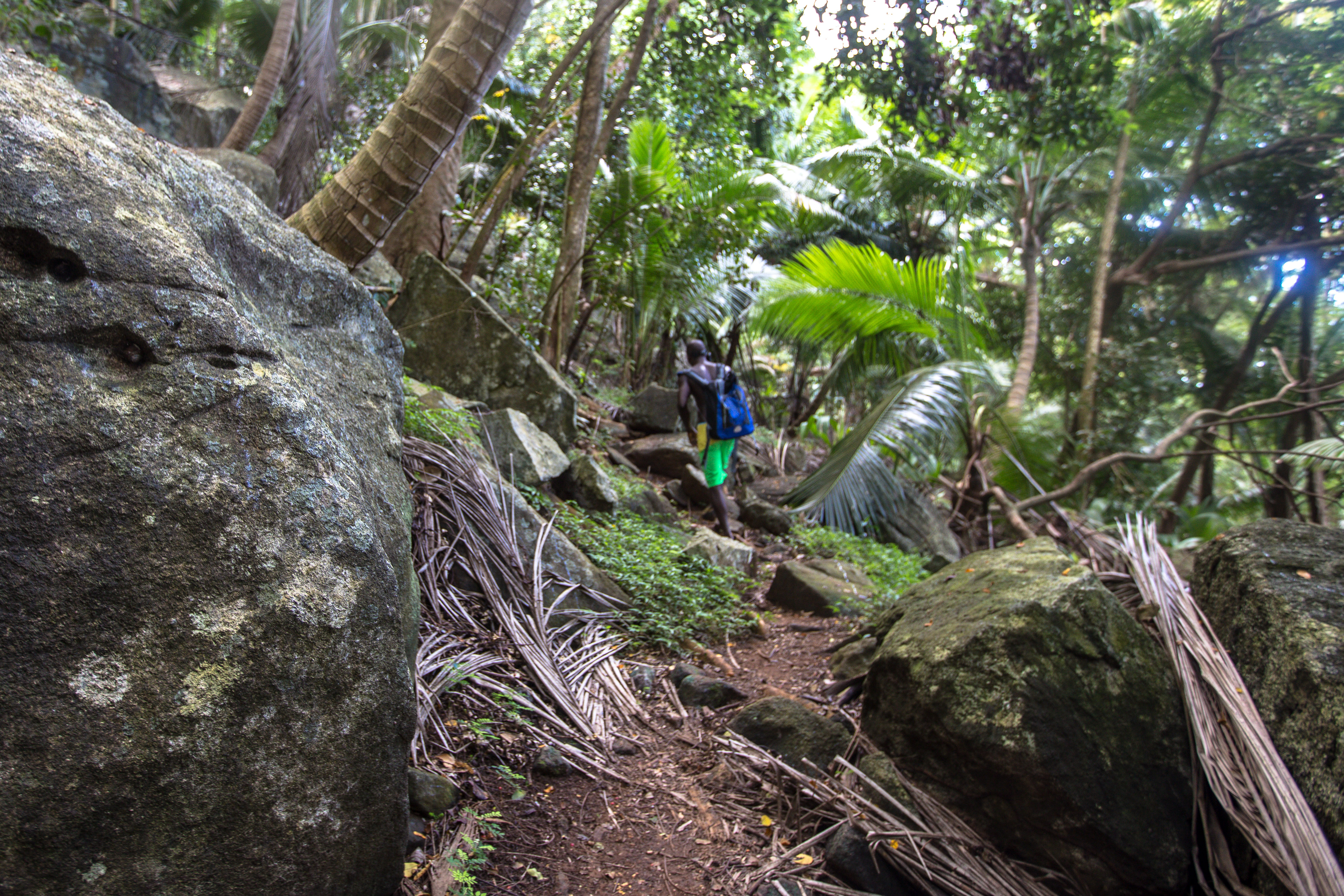 Anse Mondon Trail, Silhouette, Seychellen