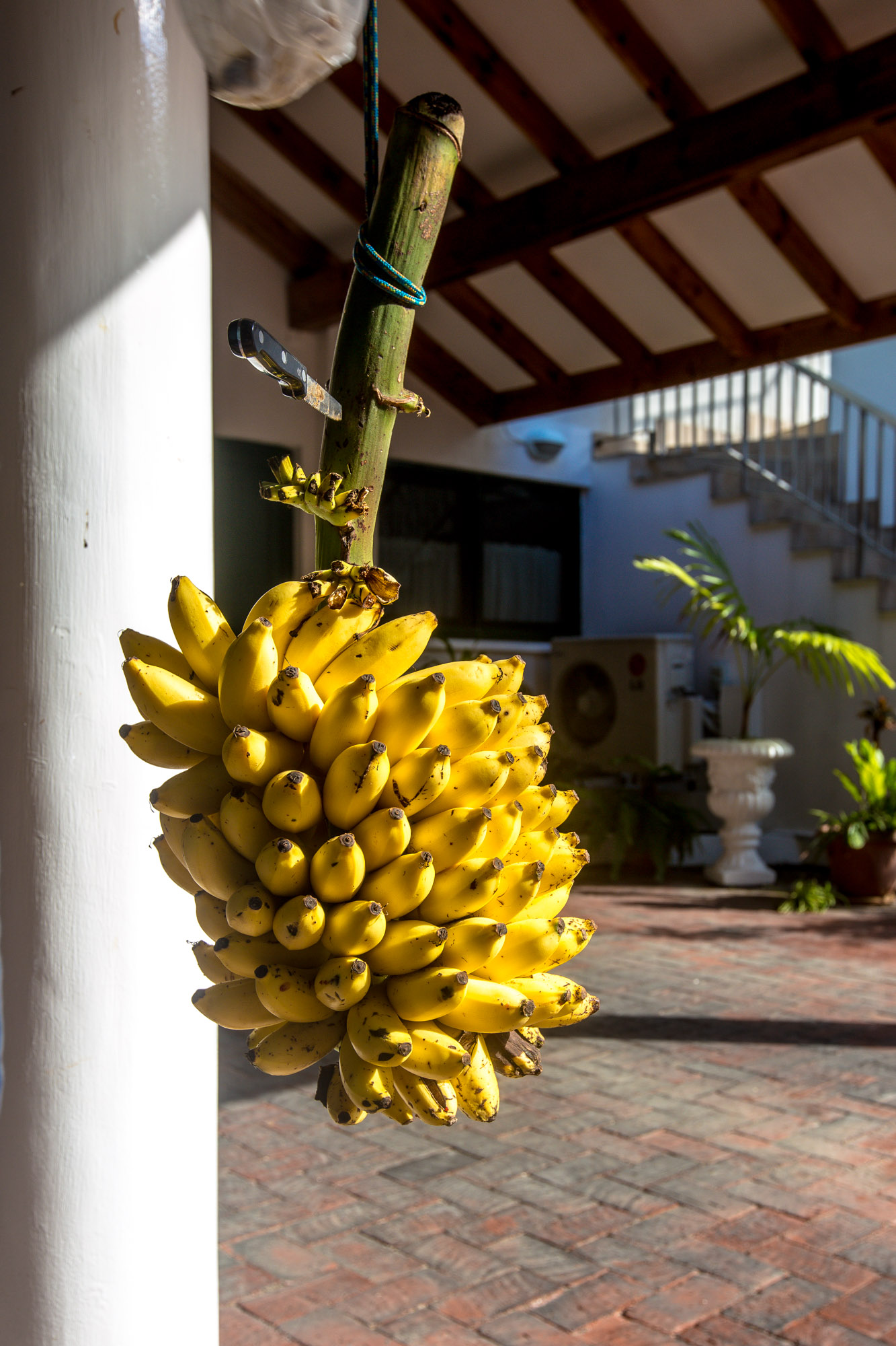 Unterkünfte auf Mahé: Hanneman Holiday Residence