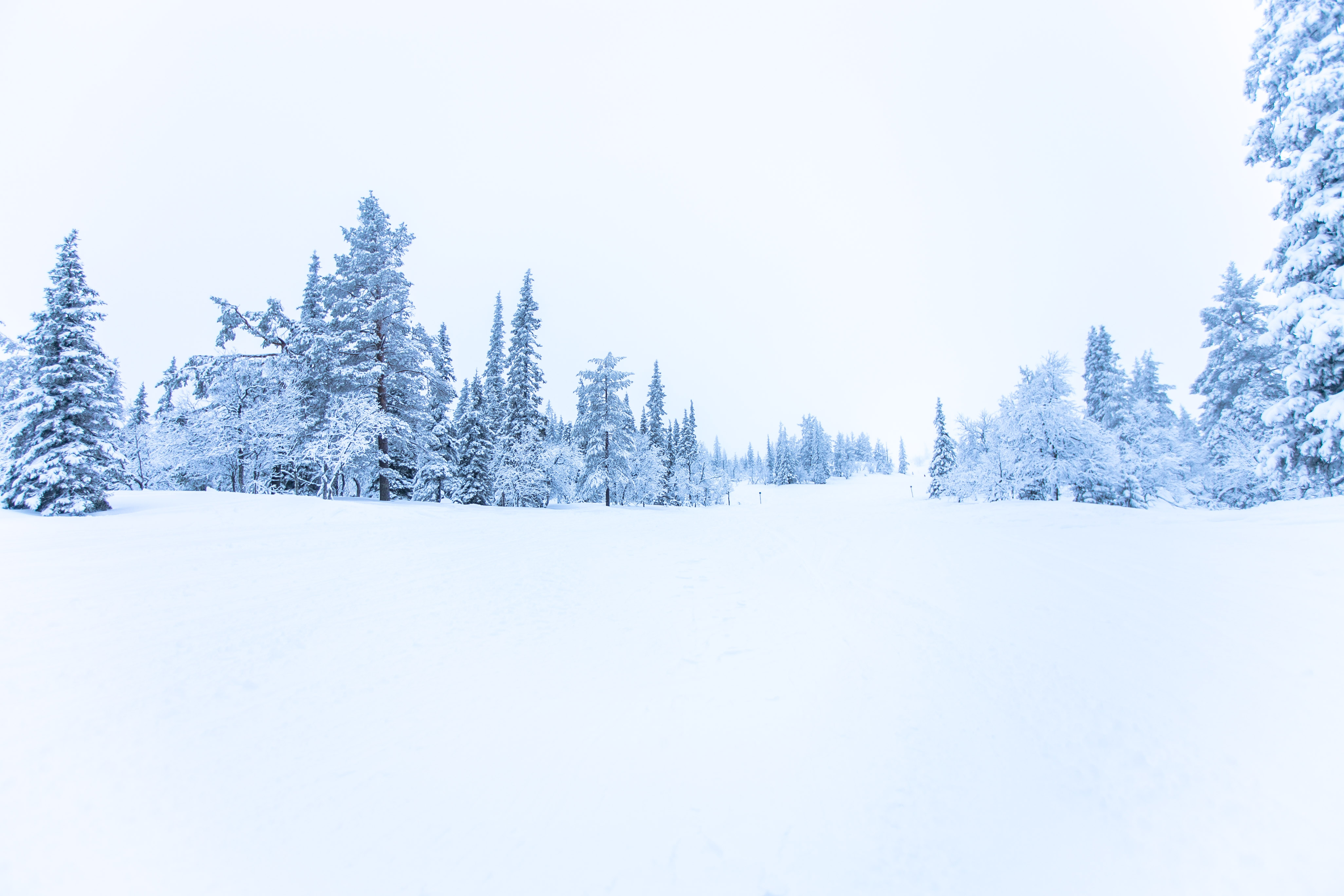 Skifahren in Ylläs, Skigebiet Lappland finnland