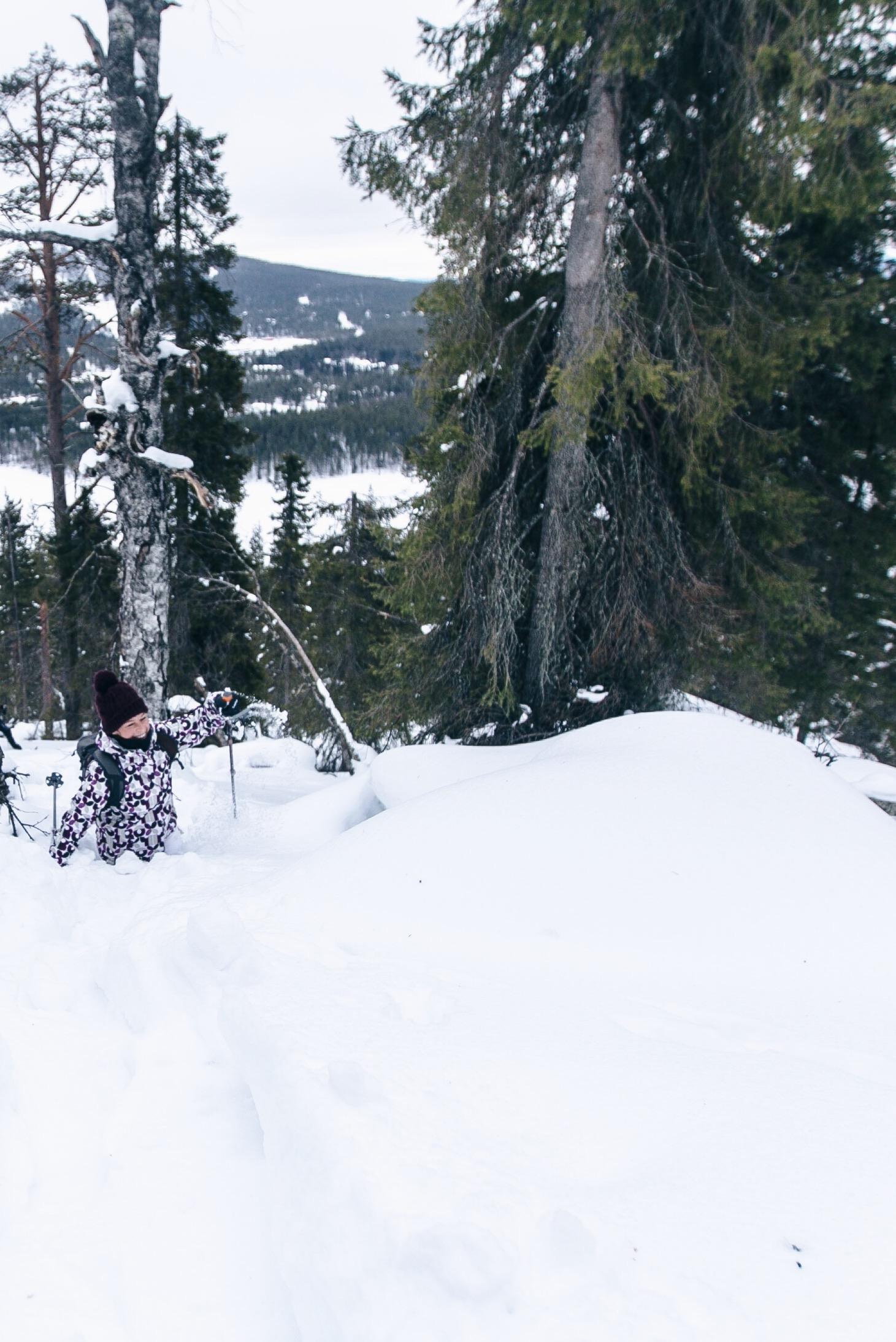 schneeschuhwandern in Levi, Lappland, Finnland