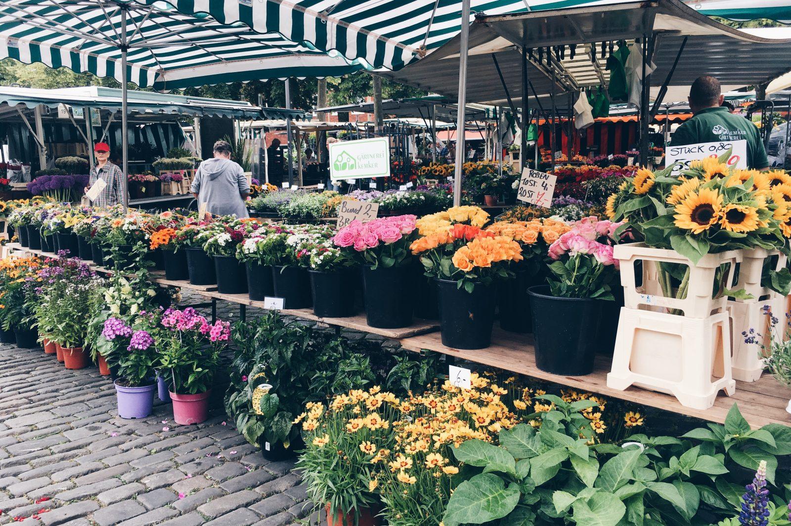 Münster erleben: Wochenmarkt Münster, Münster Wochenende