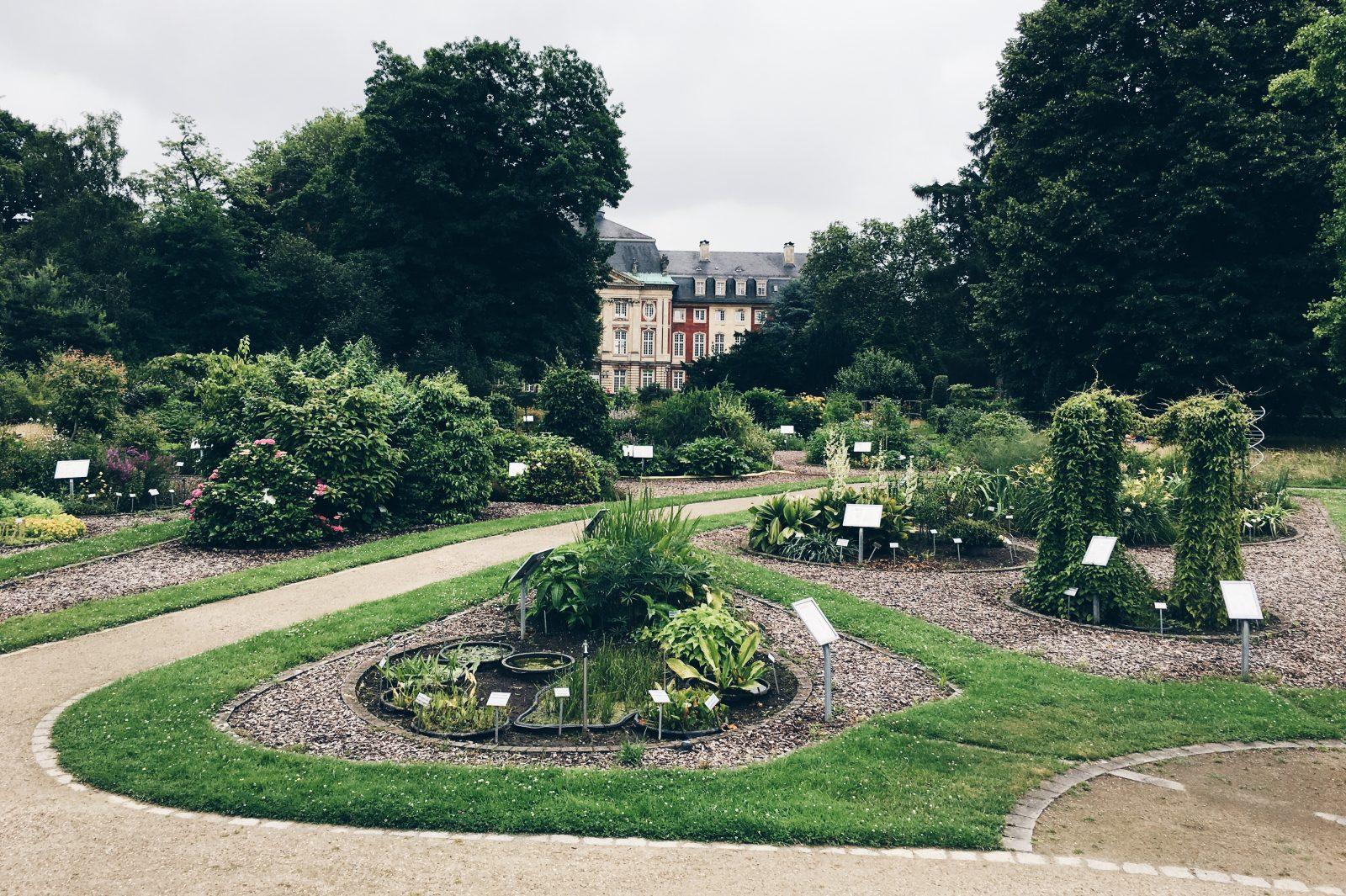Münster erleben, Tipps, Botanischer Garten Münster