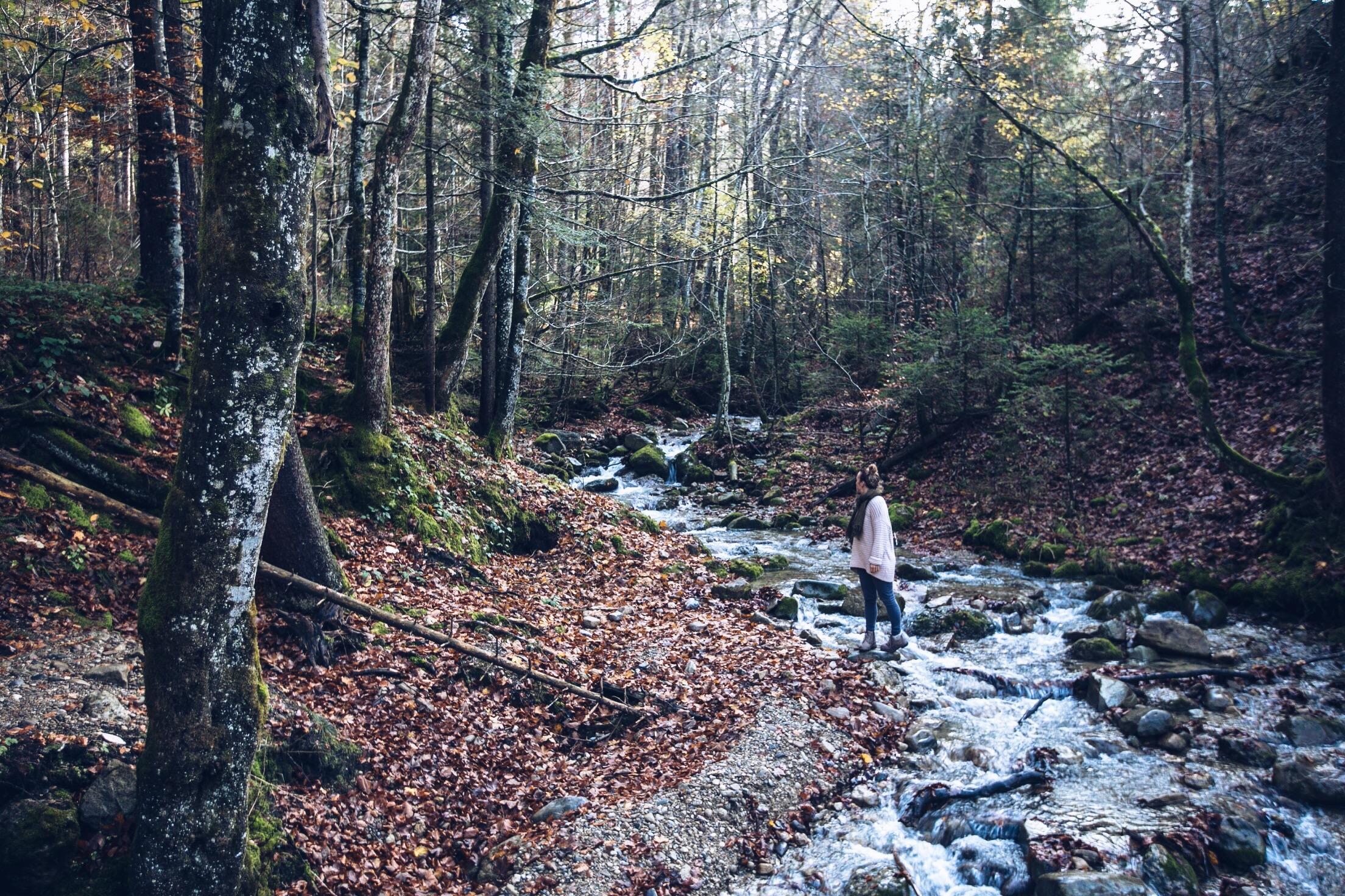 Oberstaufen, Ausflüge im Allgäu, Ausflugsziele