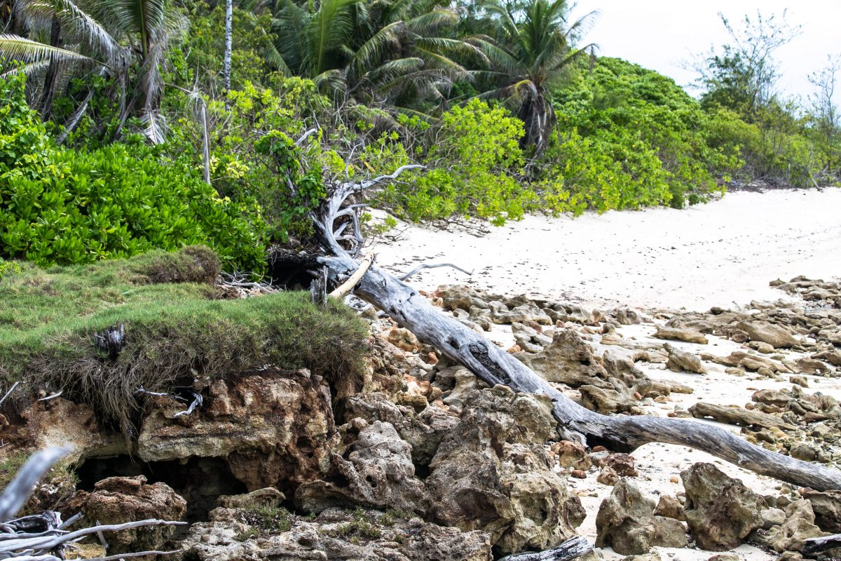 Klimawandel, Erosion Seychellen, Denis Island