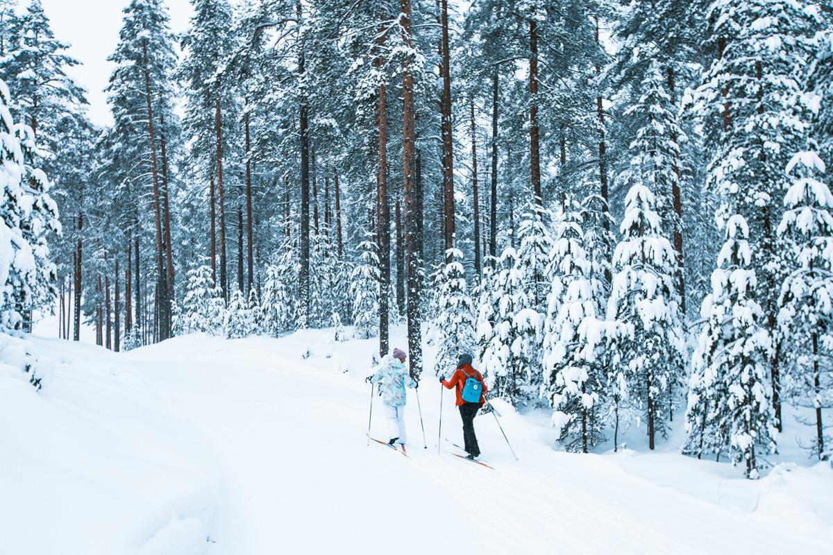 Finnland im Winter, Tipps, Skilanglauf lernen vom Profi