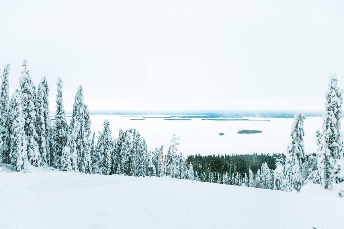 Koli nationalpark, finnland, Ukko-Koli, ski, snowboard