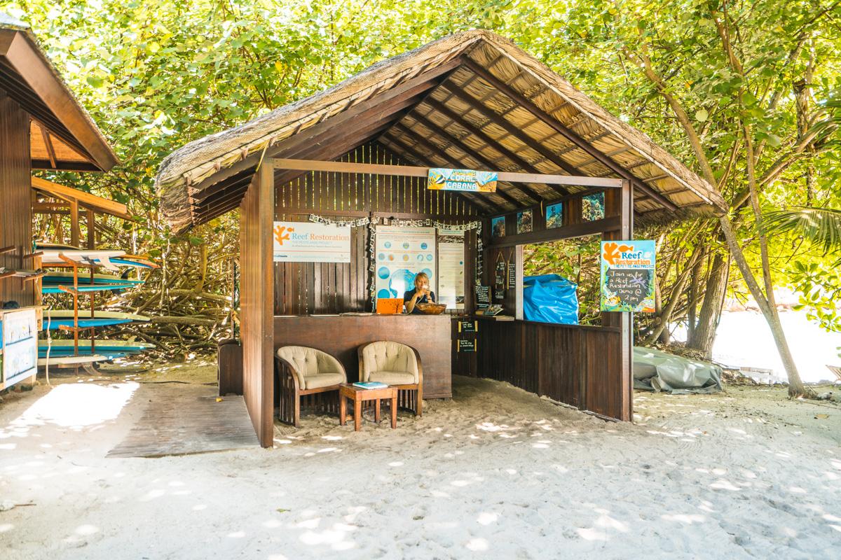 Wise Oceans, Four Seasons Seychellen