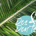 22 DOs und DON'Ts auf den Seychellen – eine Anleitung für Urlauber