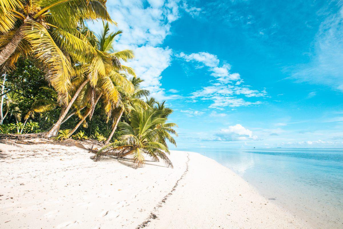 Alphonse Seychellen, Äußere Inseln, Outer Islands, Alphonse Atoll