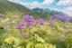 Wanderung zum Stubnerkogel, Tischkogel, Gasteinertal wandern, Österreich