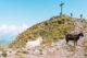 Wanderung zur Laugenspitze und zum Laugensee, Lana Südtirol Wandern, Ausflugsziele